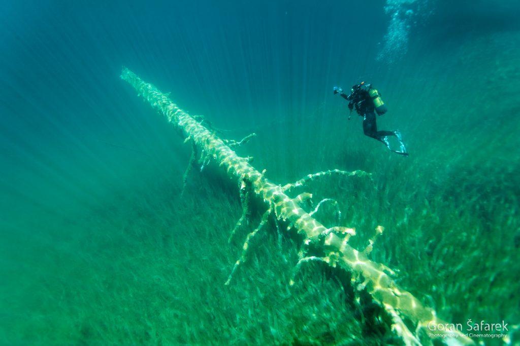 plitvička jezera, šafarek, ronjenje, podvodno,