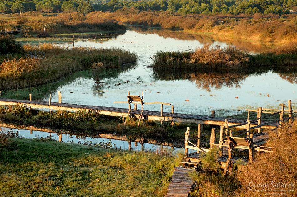 vransko jezero, dalmacija, vrana, šetnica, poučna st, trskaaza