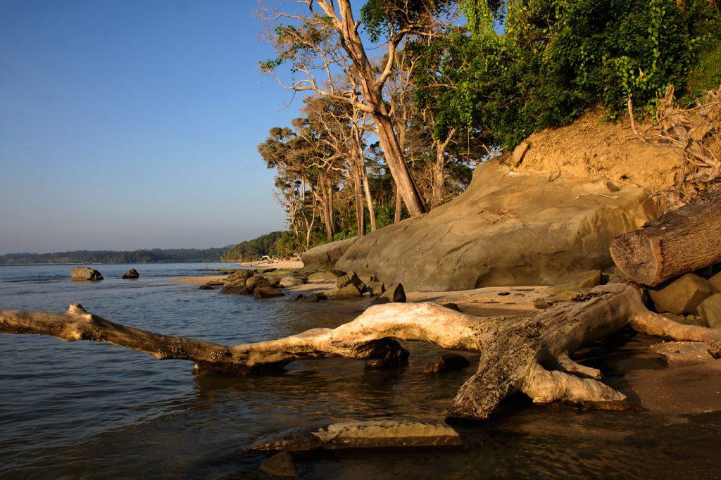 andamani, šafarek, plaža, ocean, džungla